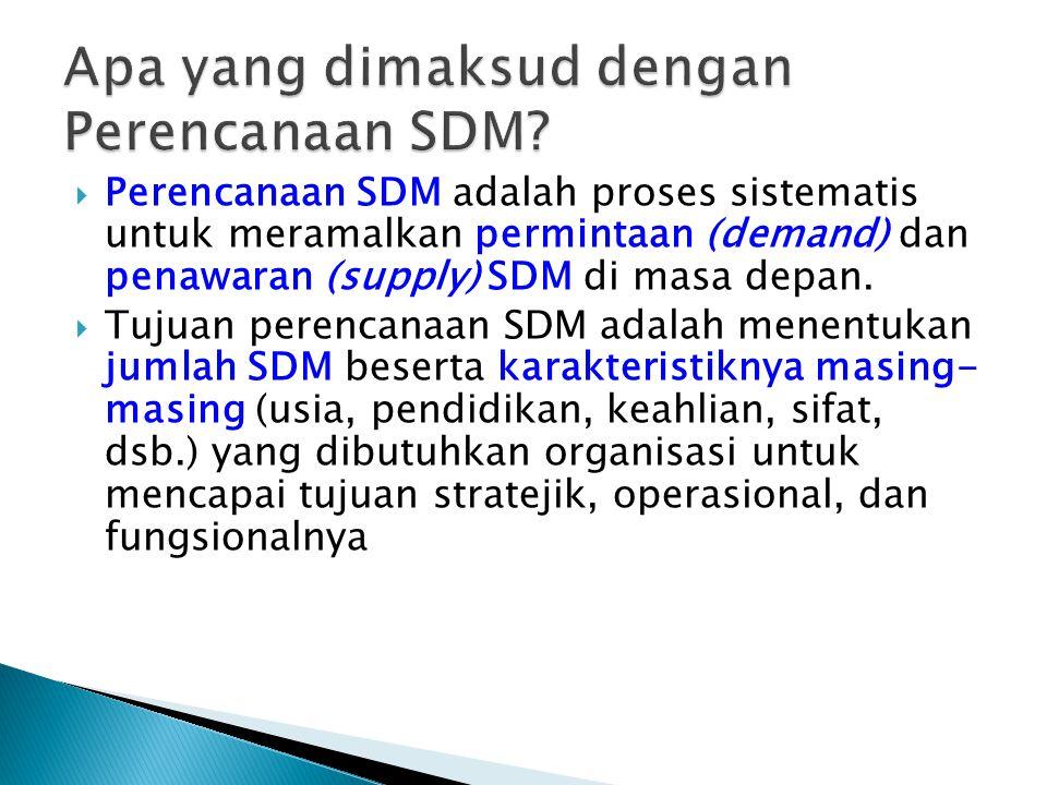 Apa yang dimaksud dengan Perencanaan SDM