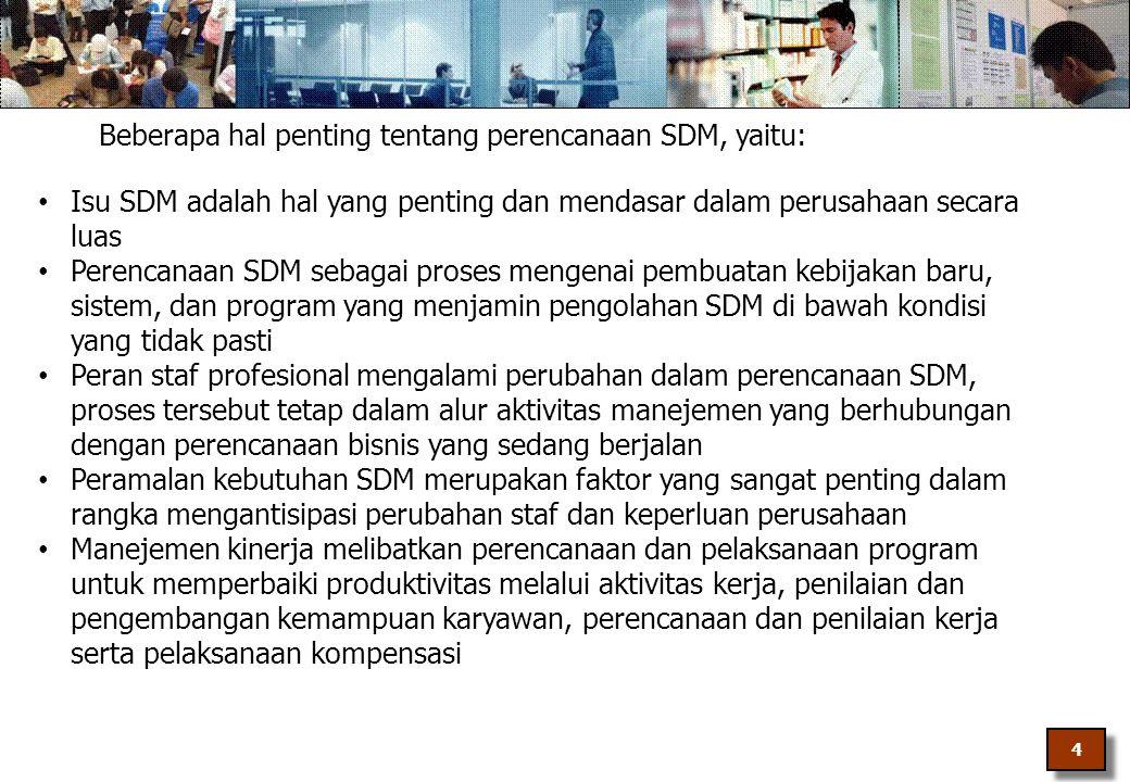 Beberapa hal penting tentang perencanaan SDM, yaitu: