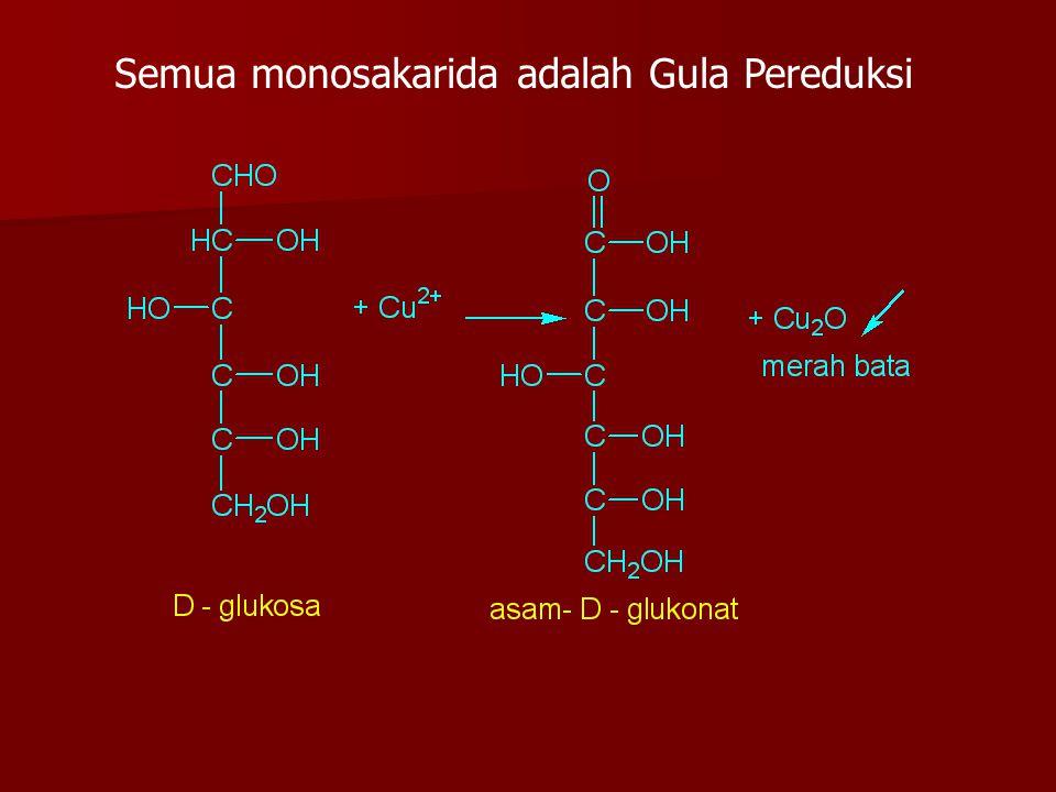 Semua monosakarida adalah Gula Pereduksi