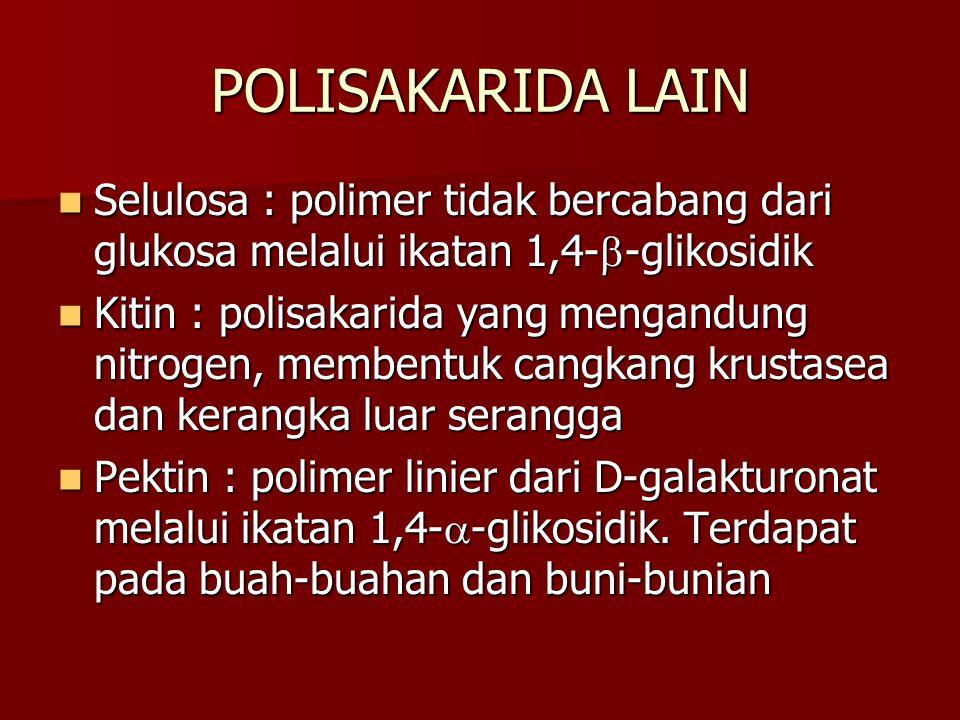 POLISAKARIDA LAIN Selulosa : polimer tidak bercabang dari glukosa melalui ikatan 1,4--glikosidik.