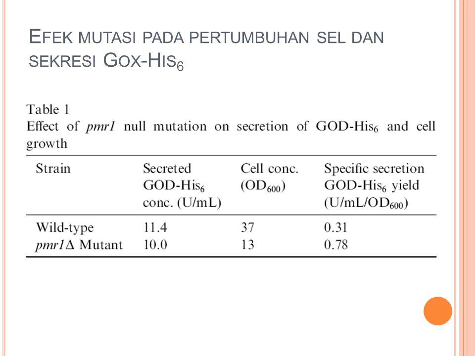 Efek mutasi pada pertumbuhan sel dan sekresi Gox-His6