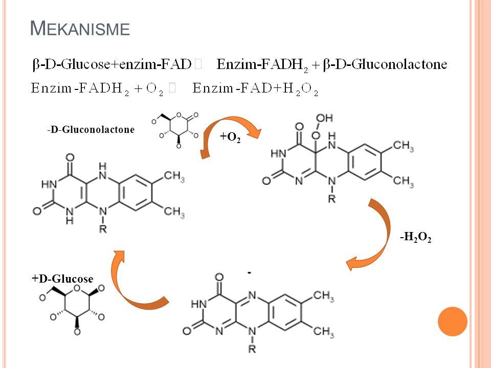 Mekanisme +O2 -H2O2 +D-Glucose -D-Gluconolactone