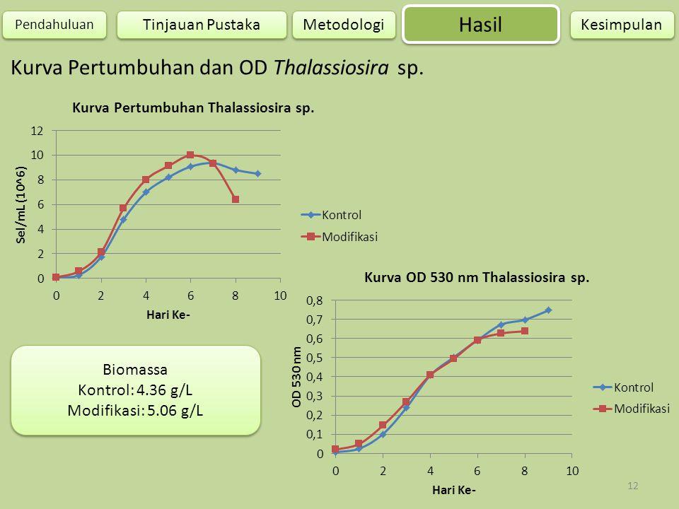Kurva Pertumbuhan dan OD Thalassiosira sp.