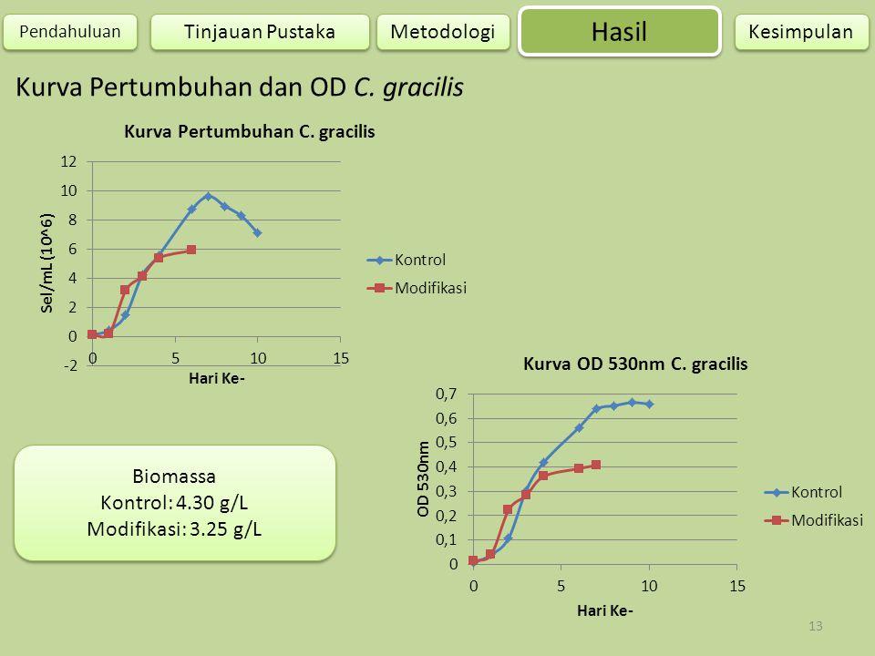 Kurva Pertumbuhan dan OD C. gracilis