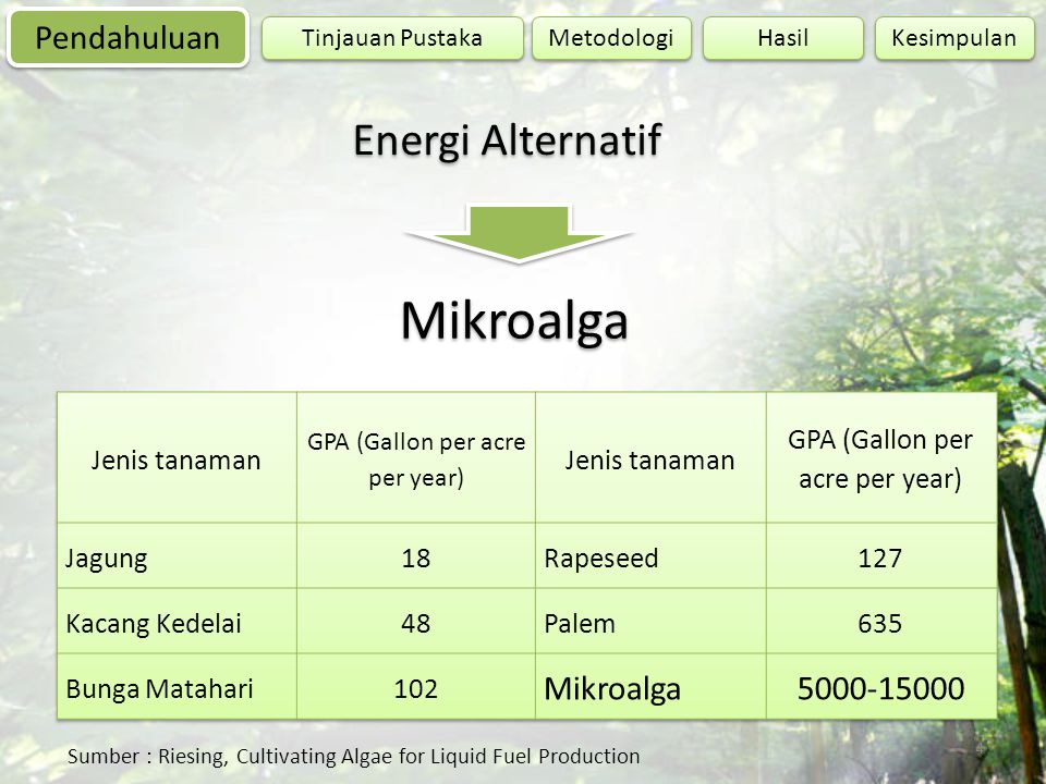 Mikroalga Energi Alternatif Pendahuluan Mikroalga 5000-15000
