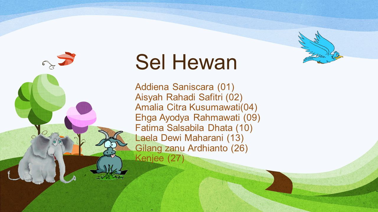 Sel Hewan Addiena Saniscara (01) Aisyah Rahadi Safitri (02)