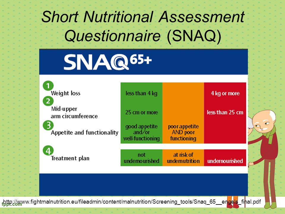 Short Nutritional Assessment Questionnaire (SNAQ)