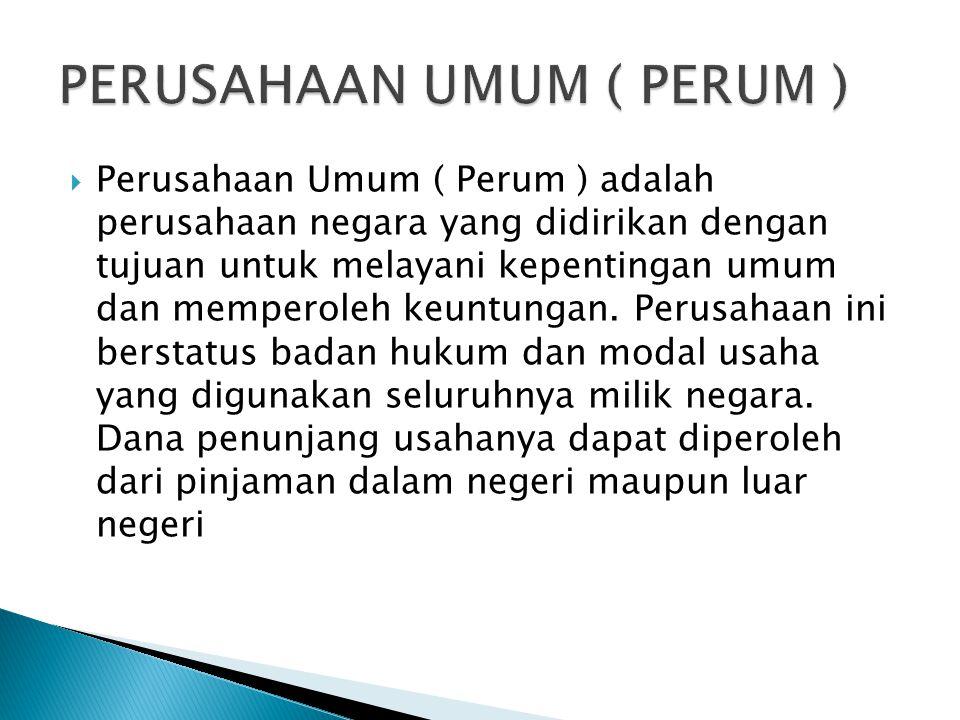 PERUSAHAAN UMUM ( PERUM )