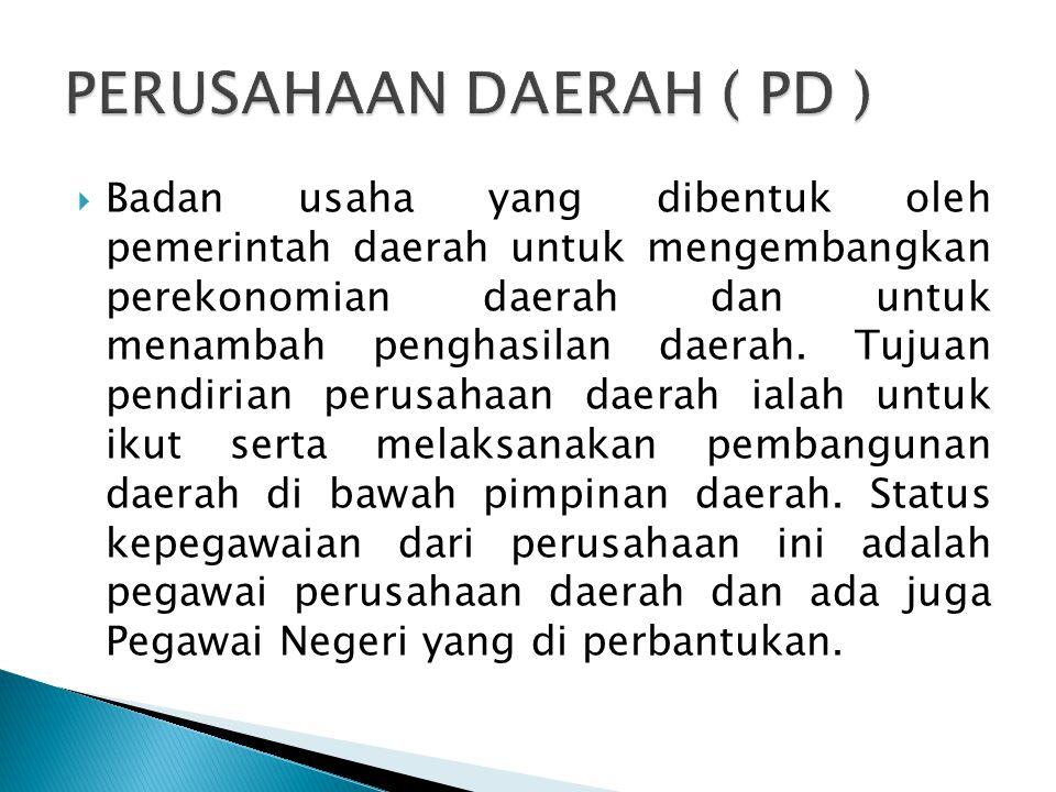 PERUSAHAAN DAERAH ( PD )