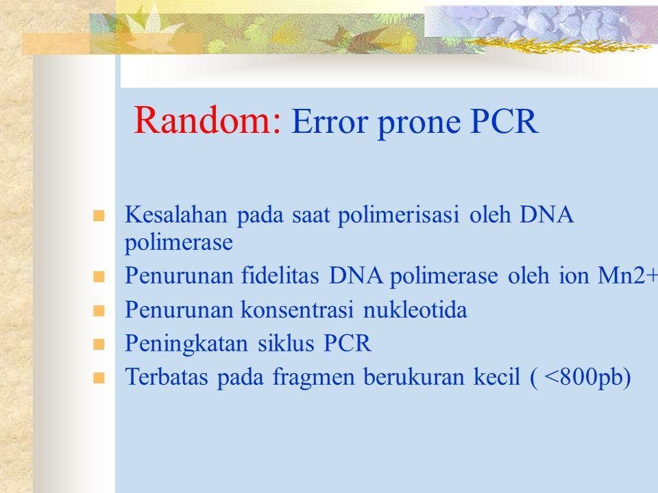Random: Error prone PCR