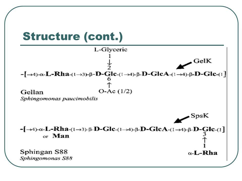Structure (cont.)