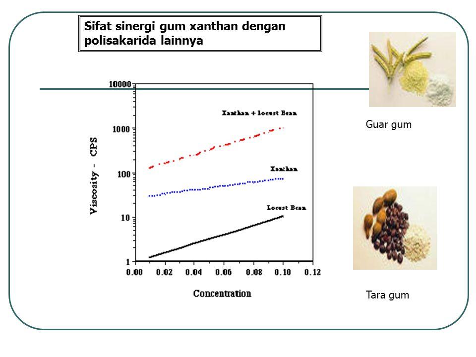 Sifat sinergi gum xanthan dengan polisakarida lainnya