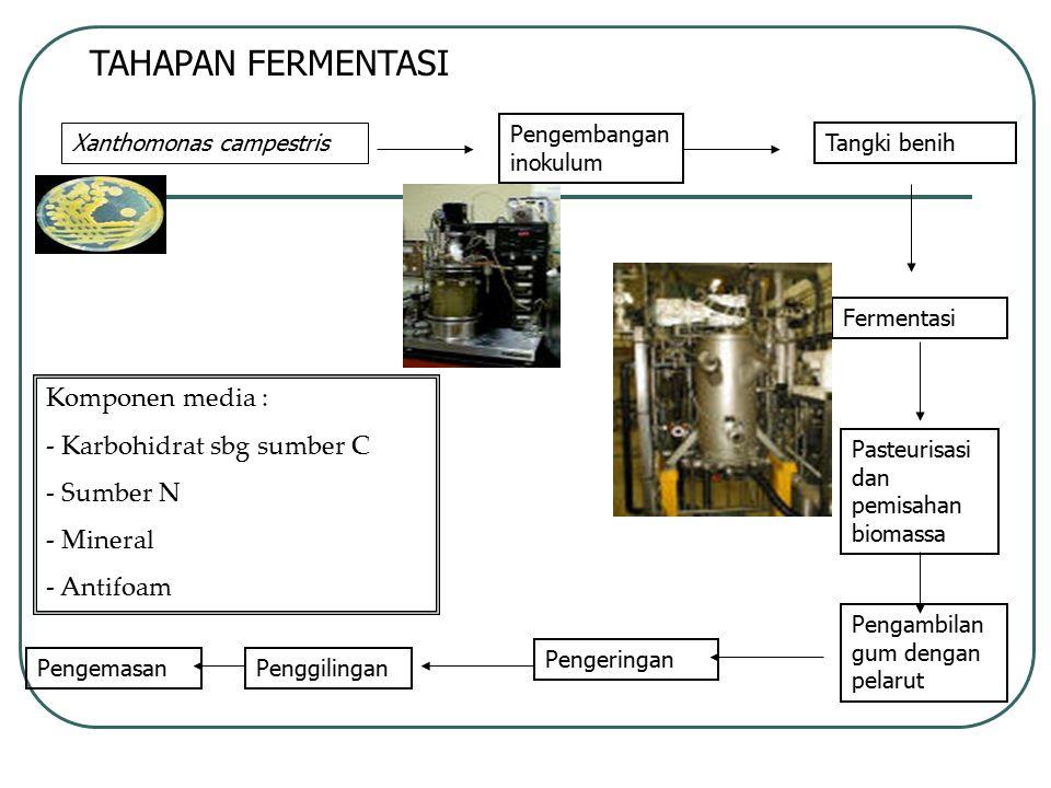 TAHAPAN FERMENTASI Komponen media : Karbohidrat sbg sumber C Sumber N