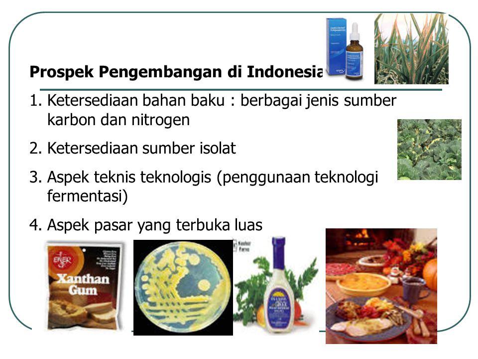 Prospek Pengembangan di Indonesia :