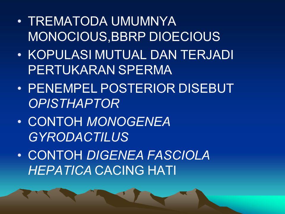 TREMATODA UMUMNYA MONOCIOUS,BBRP DIOECIOUS