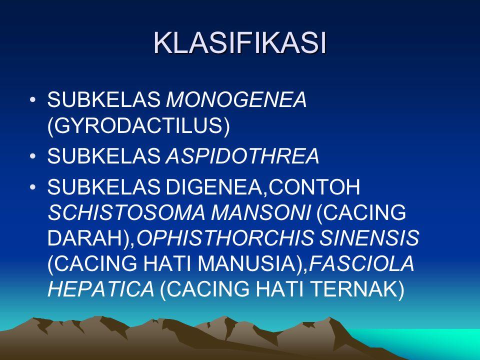 KLASIFIKASI SUBKELAS MONOGENEA (GYRODACTILUS) SUBKELAS ASPIDOTHREA