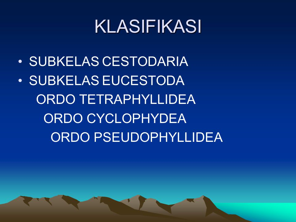 KLASIFIKASI SUBKELAS CESTODARIA SUBKELAS EUCESTODA ORDO TETRAPHYLLIDEA