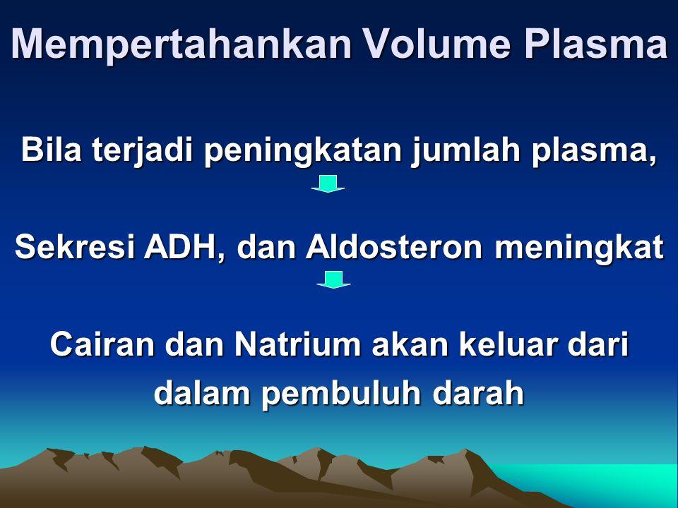 Mempertahankan Volume Plasma