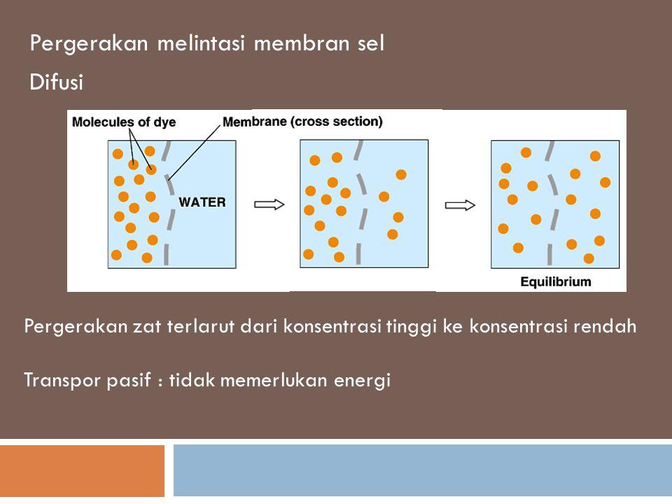 Pergerakan melintasi membran sel