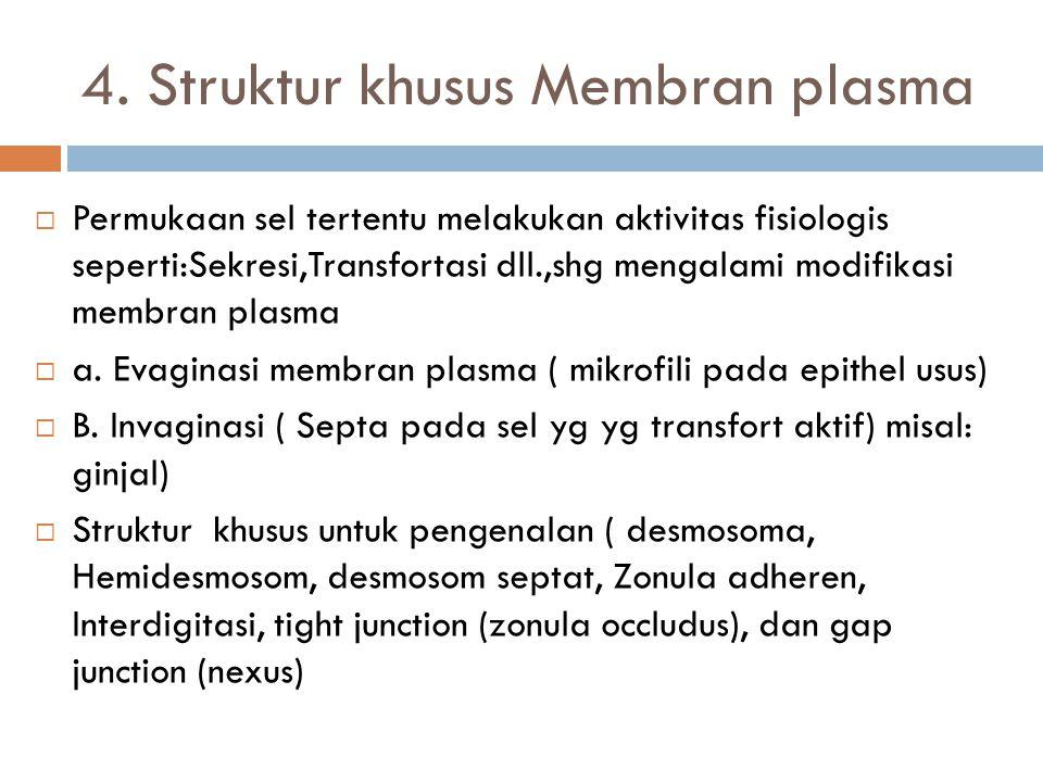 4. Struktur khusus Membran plasma