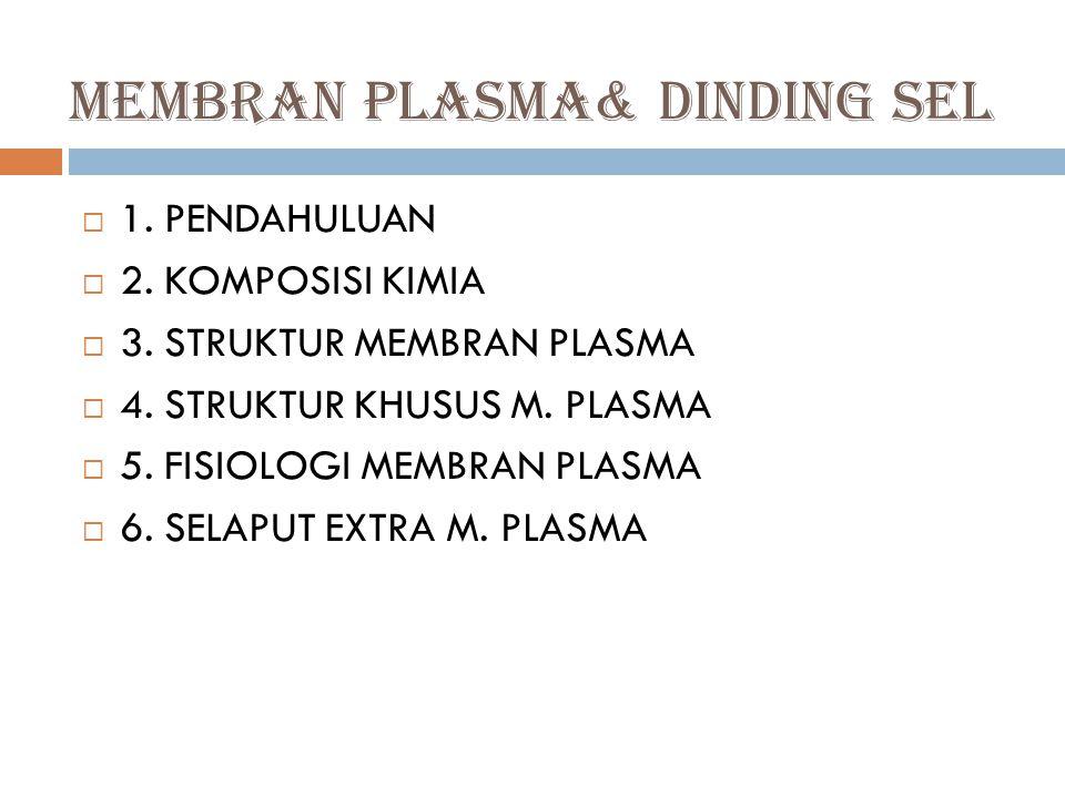 MEMBRAN PLASMA& DINDING SEL