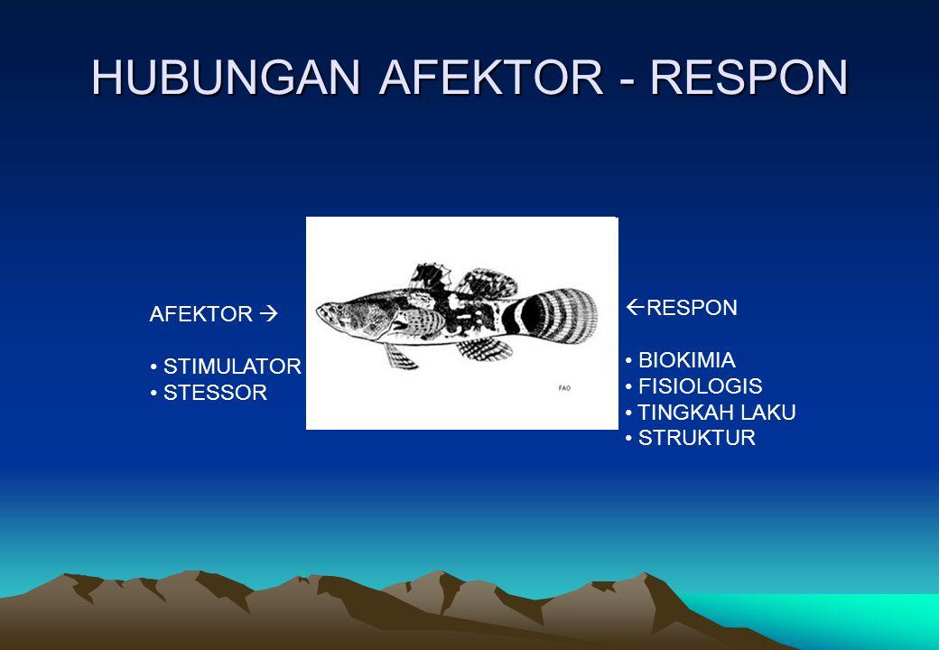 HUBUNGAN AFEKTOR - RESPON
