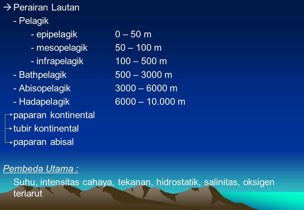 Perairan Lautan - Pelagik. - epipelagik 0 – 50 m. - mesopelagik 50 – 100 m. - infrapelagik 100 – 500 m.