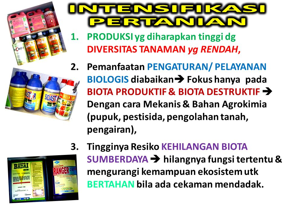INTENSIFIKASI PERTANIAN