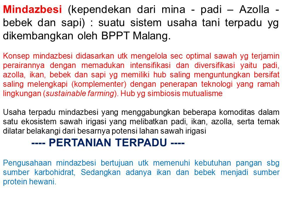 Mindazbesi (kependekan dari mina - padi – Azolla - bebek dan sapi) : suatu sistem usaha tani terpadu yg dikembangkan oleh BPPT Malang.