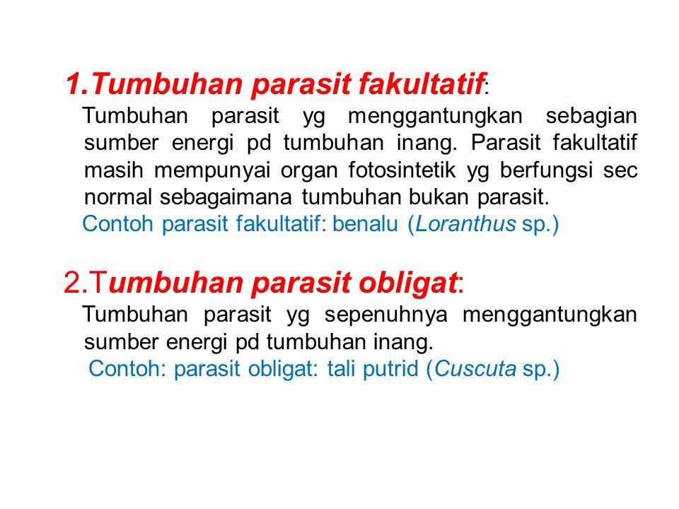 Tumbuhan parasit fakultatif: