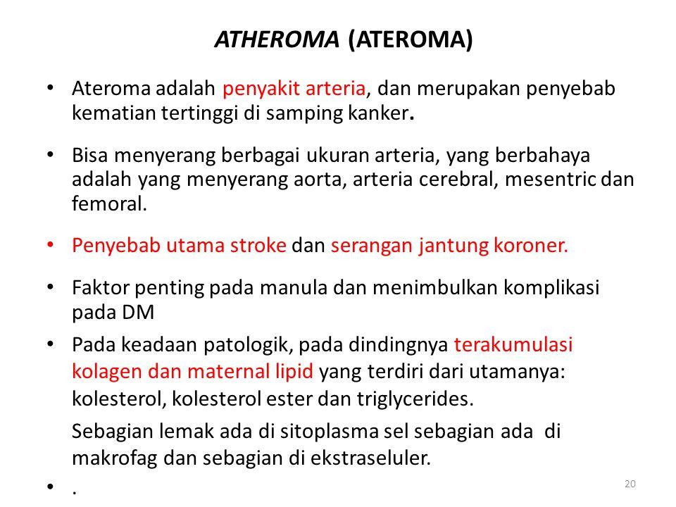 ATHEROMA (ATEROMA) Ateroma adalah penyakit arteria, dan merupakan penyebab kematian tertinggi di samping kanker.