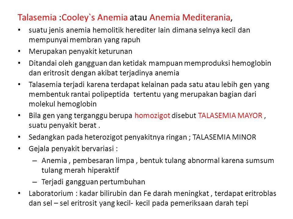 Talasemia :Cooley`s Anemia atau Anemia Mediterania,