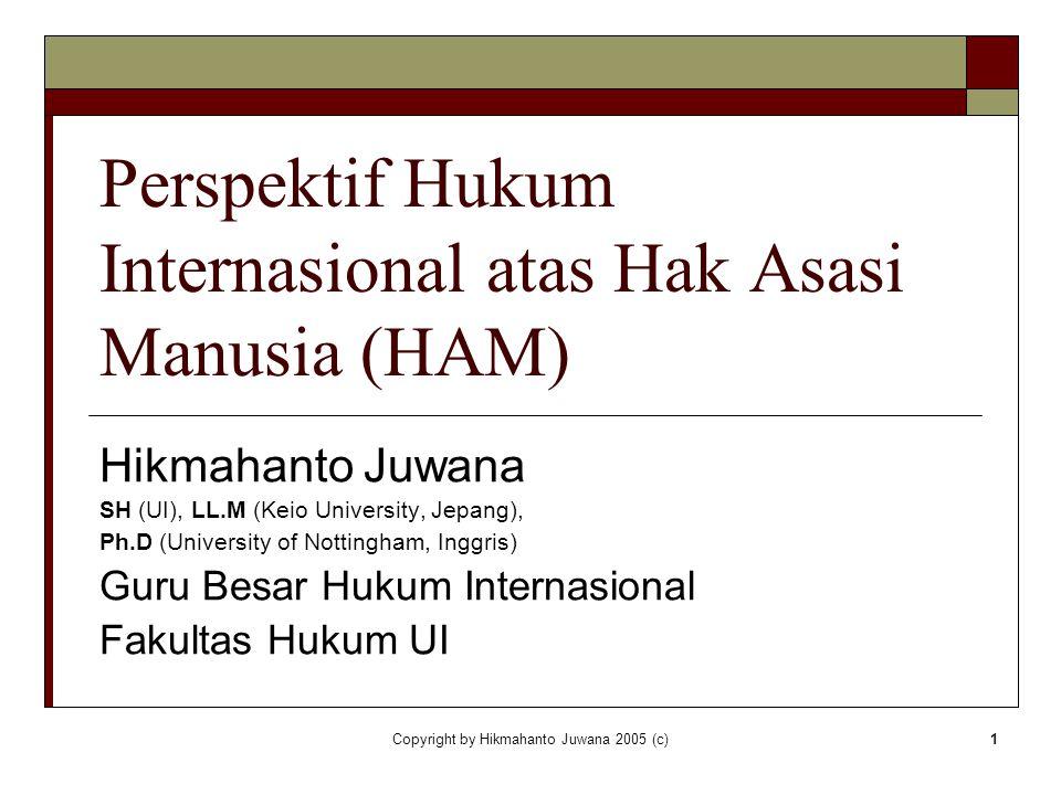 Perspektif Hukum Internasional atas Hak Asasi Manusia (HAM)
