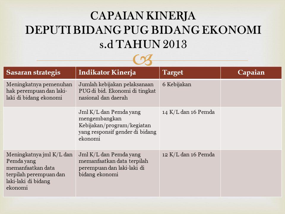 CAPAIAN KINERJA DEPUTI BIDANG PUG BIDANG EKONOMI s.d TAHUN 2013