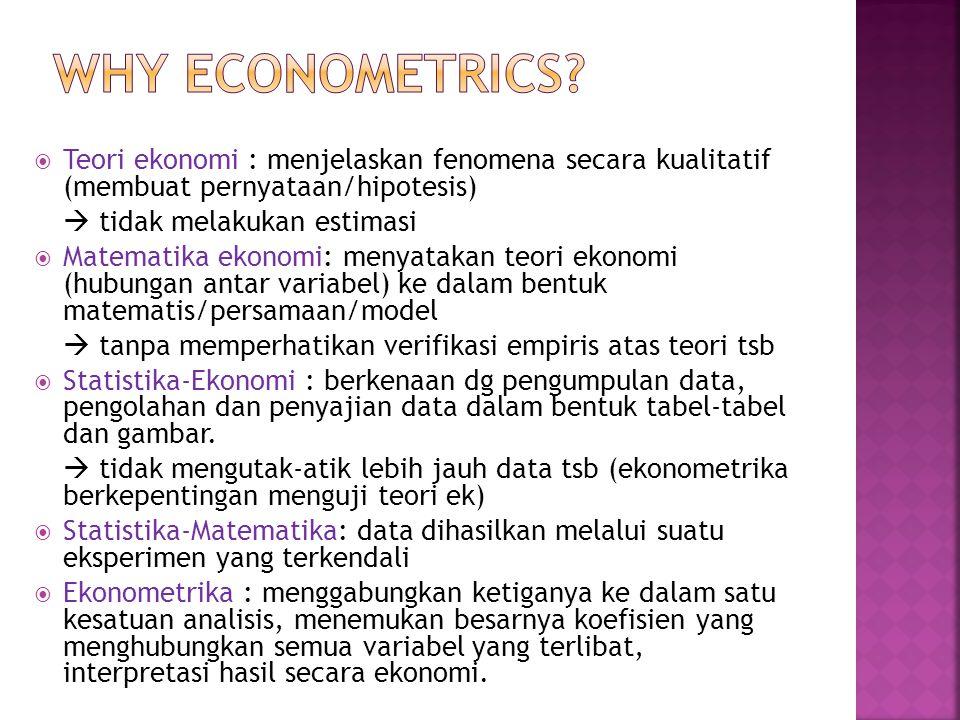 Why eConometriCS Teori ekonomi : menjelaskan fenomena secara kualitatif (membuat pernyataan/hipotesis)
