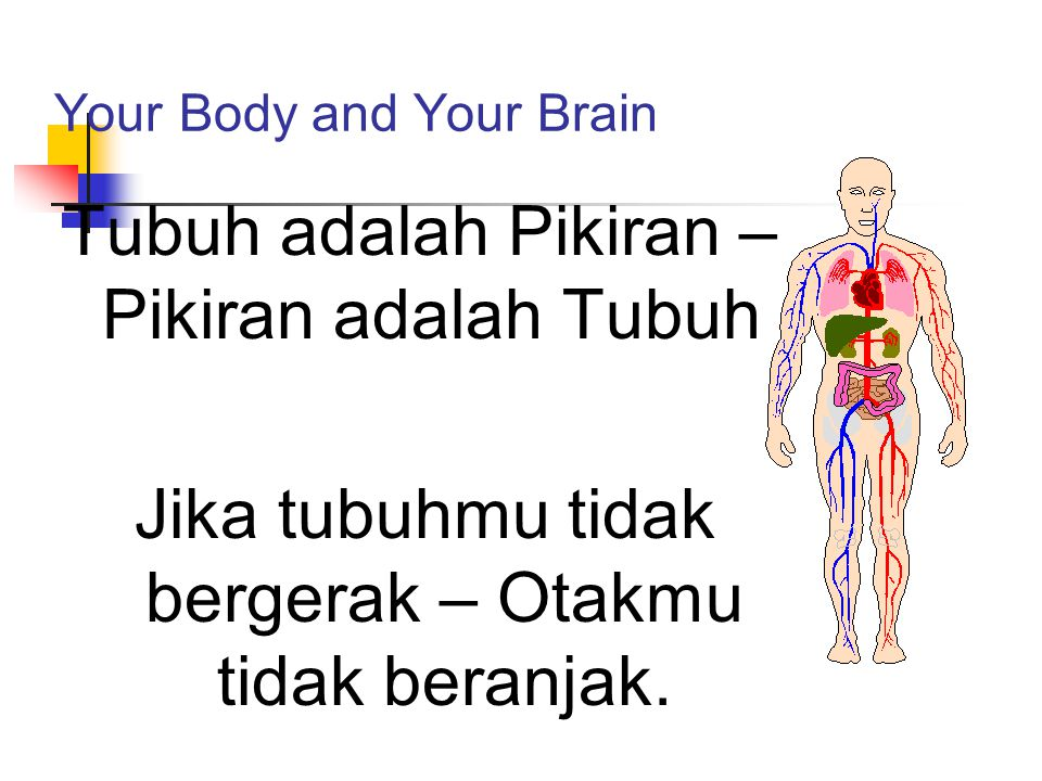 Your Body and Your Brain