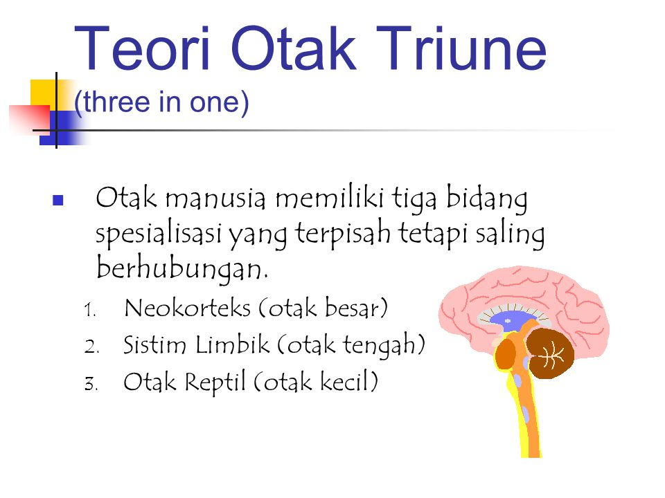 Teori Otak Triune (three in one)