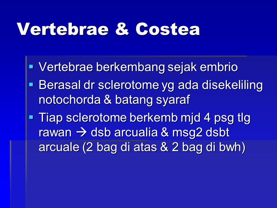 Vertebrae & Costea Vertebrae berkembang sejak embrio