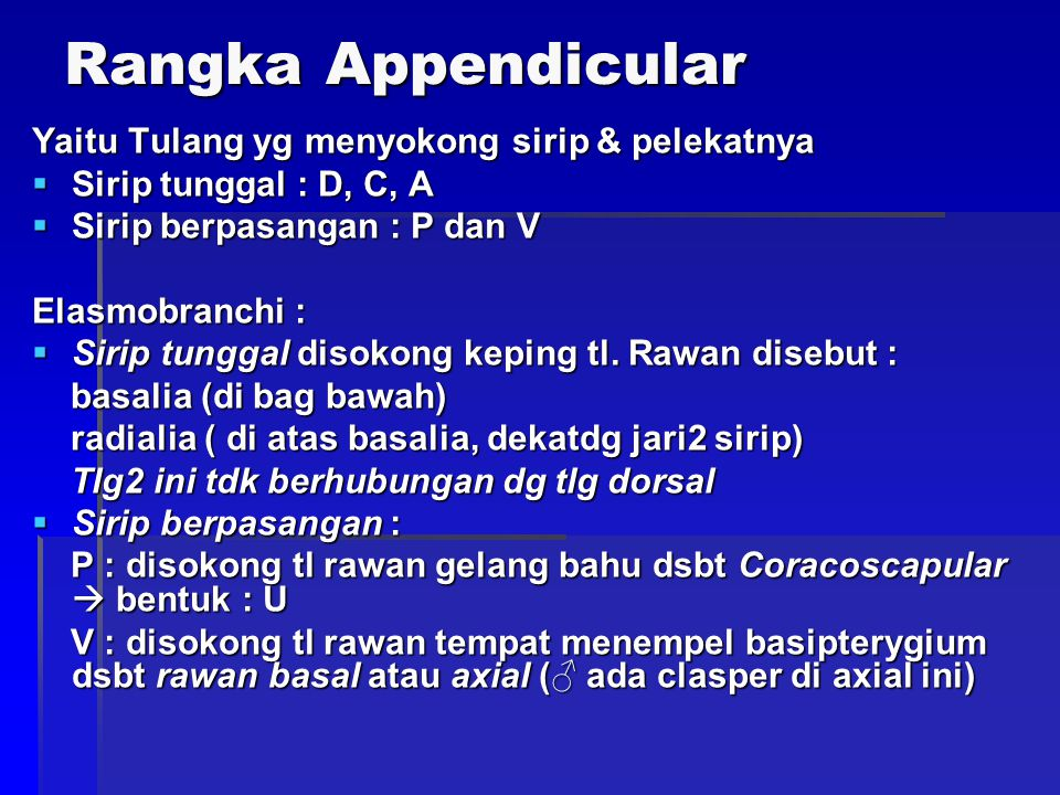 Rangka Appendicular Yaitu Tulang yg menyokong sirip & pelekatnya