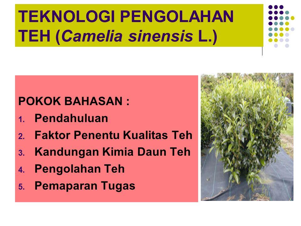 TEKNOLOGI PENGOLAHAN TEH (Camelia sinensis L.)