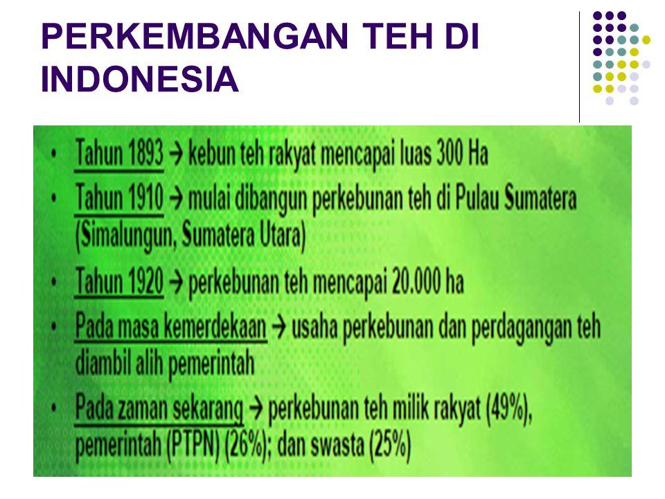 PERKEMBANGAN TEH DI INDONESIA