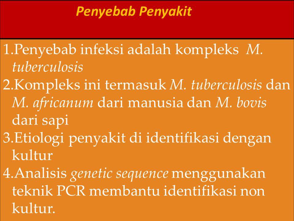 Penyebab Penyakit Penyebab infeksi adalah kompleks M. tuberculosis.
