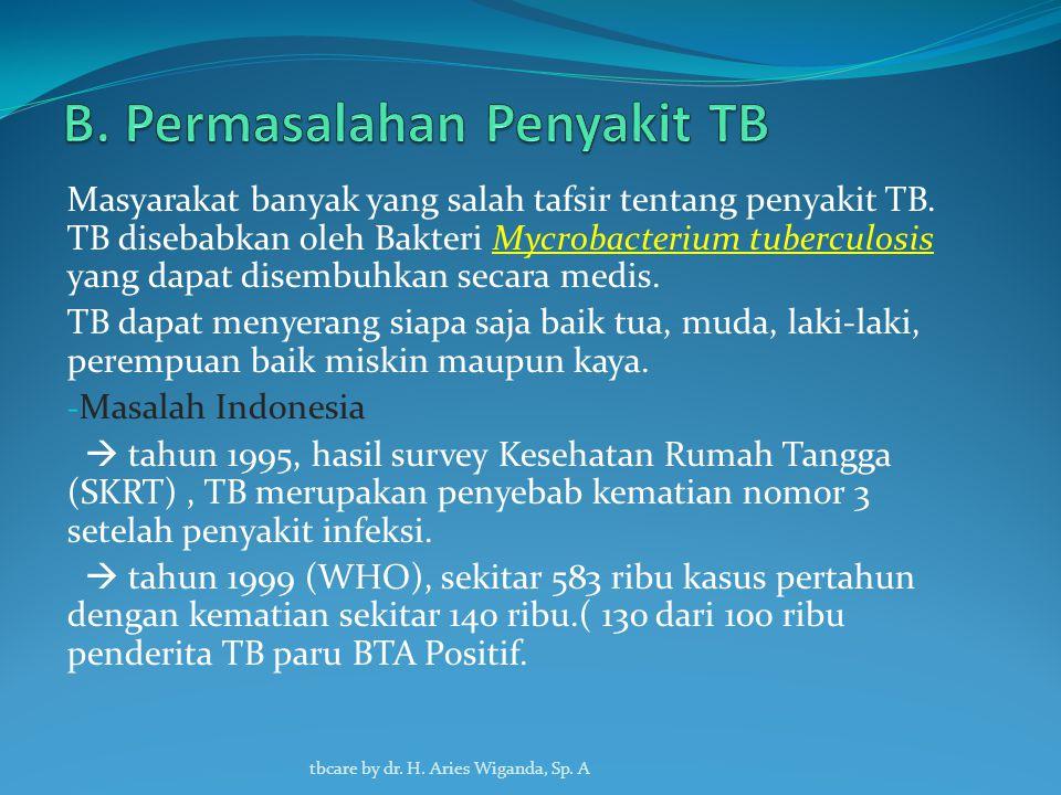 B. Permasalahan Penyakit TB