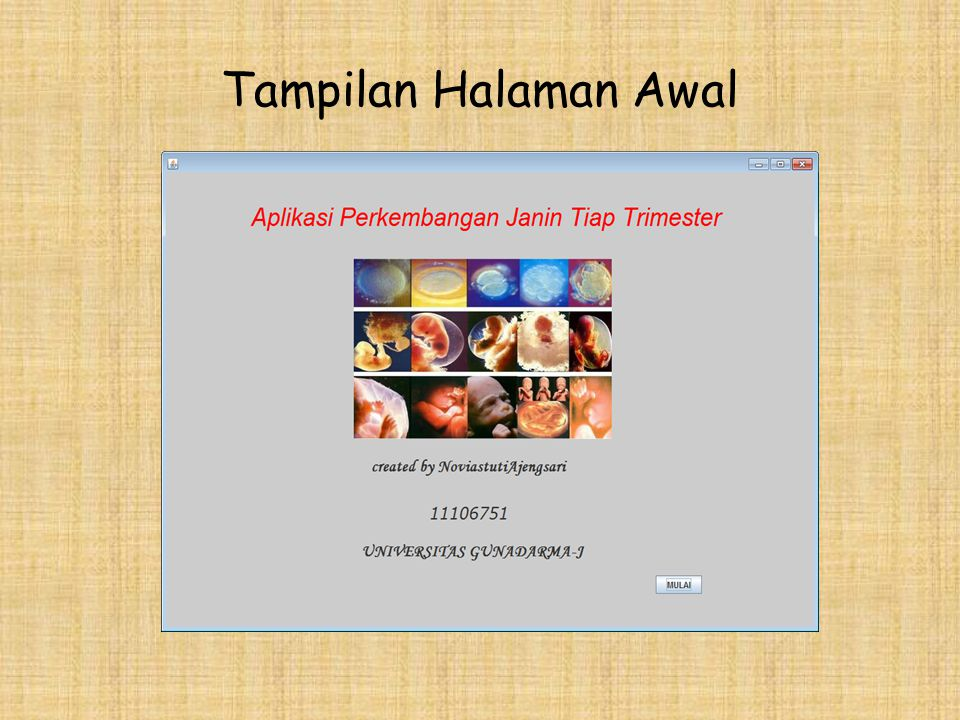 Tampilan Halaman Awal