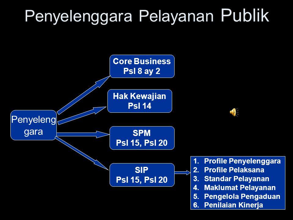Penyelenggara Pelayanan Publik