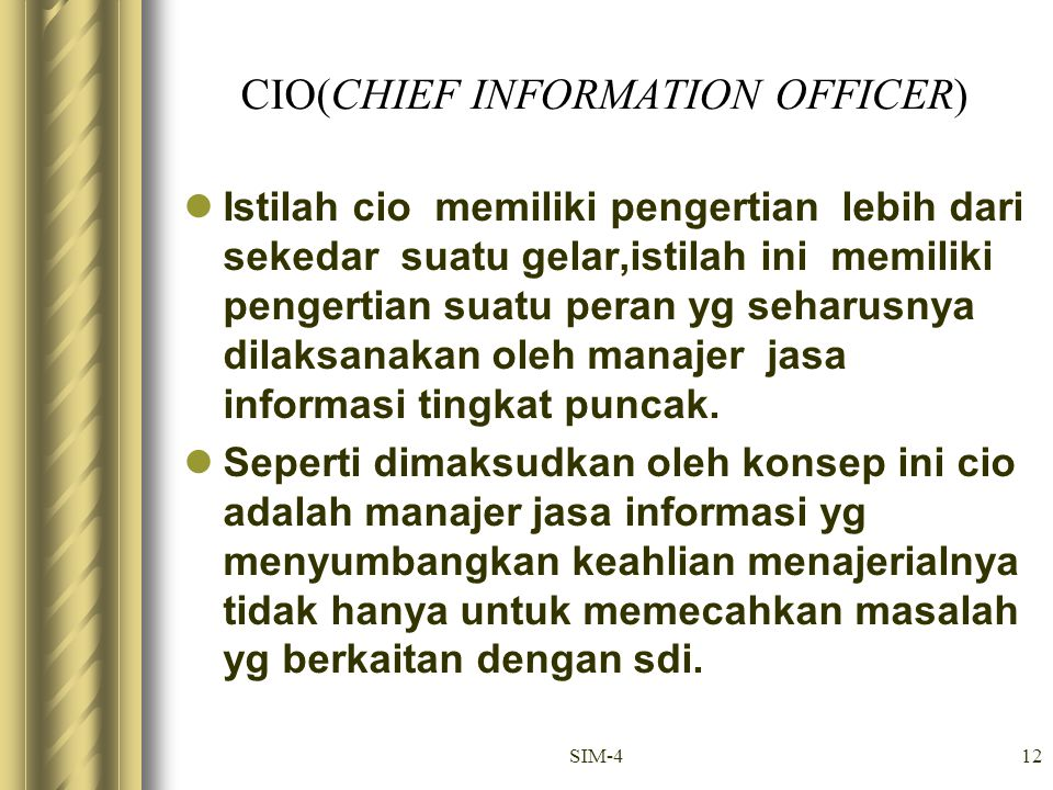 CIO(CHIEF INFORMATION OFFICER)