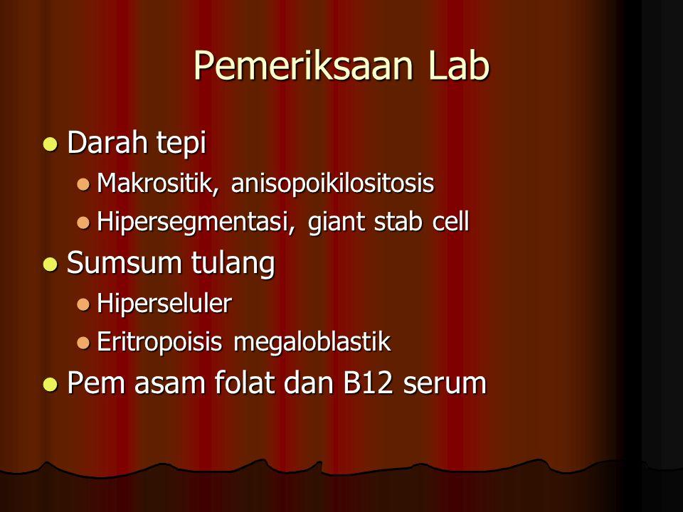 Pemeriksaan Lab Darah tepi Sumsum tulang Pem asam folat dan B12 serum