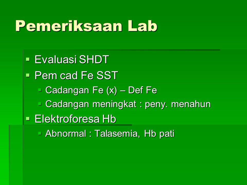 Pemeriksaan Lab Evaluasi SHDT Pem cad Fe SST Elektroforesa Hb