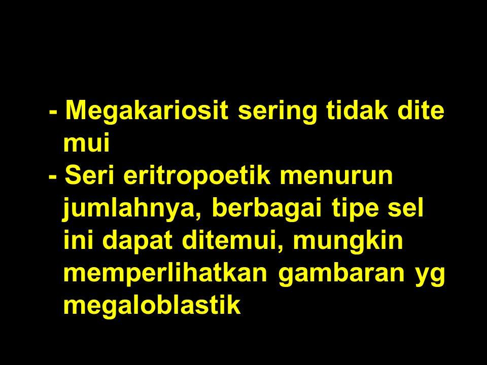 - Seri eritropoetik menurun jumlahnya, berbagai tipe sel