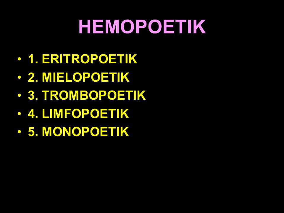 HEMOPOETIK 1. ERITROPOETIK 2. MIELOPOETIK 3. TROMBOPOETIK